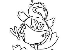 Kansas jayhawk coloring page