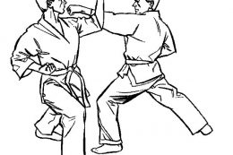 Karate monkey coloring pages