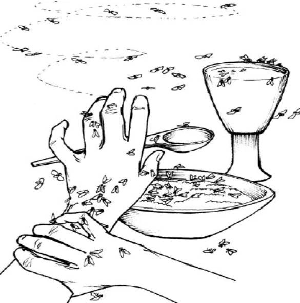 10 plagues of egypt coloring pages photo - 1