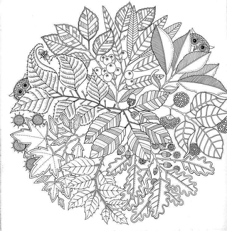 100 coloring pages pdf photo - 1