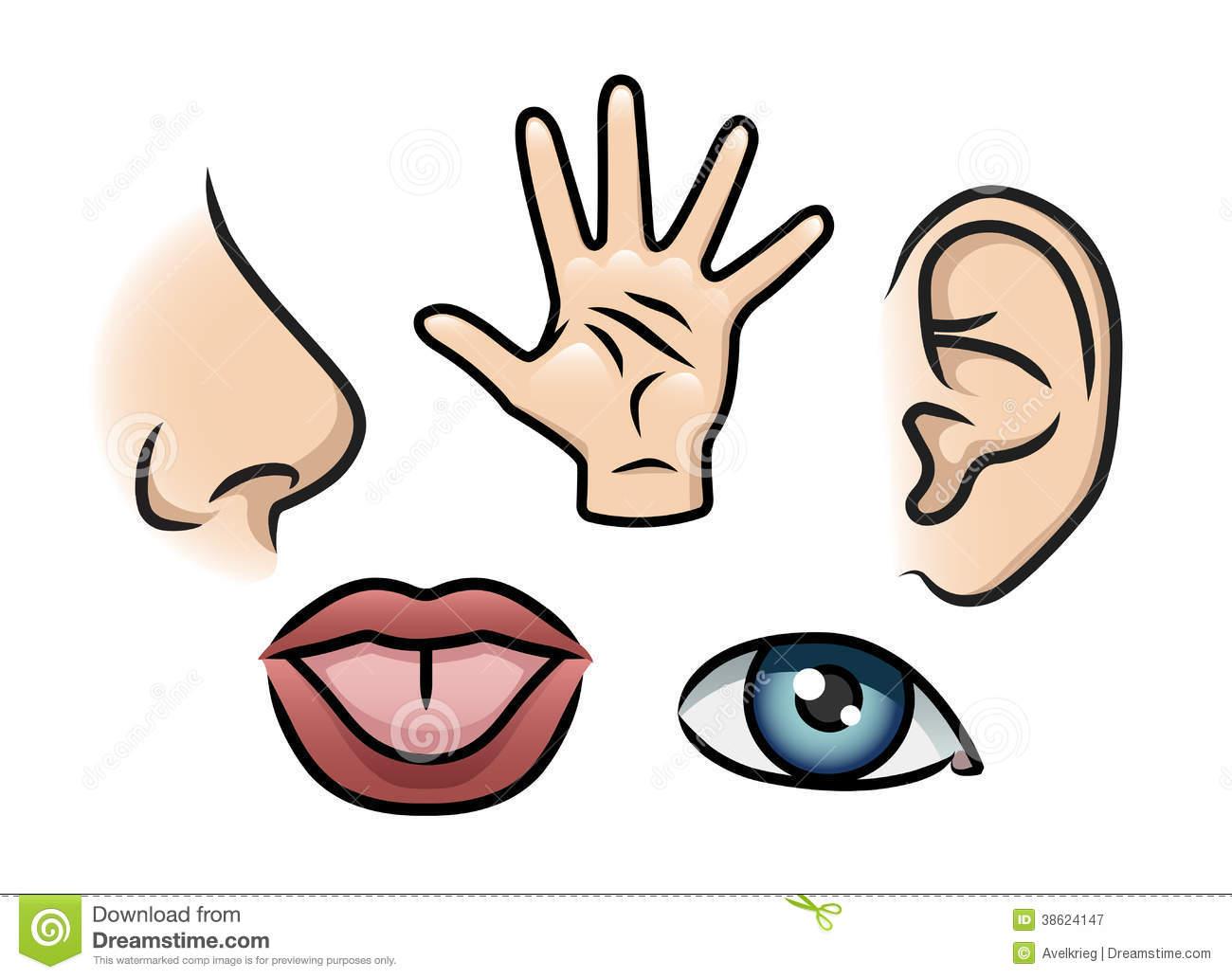 5 senses coloring pages photo - 1