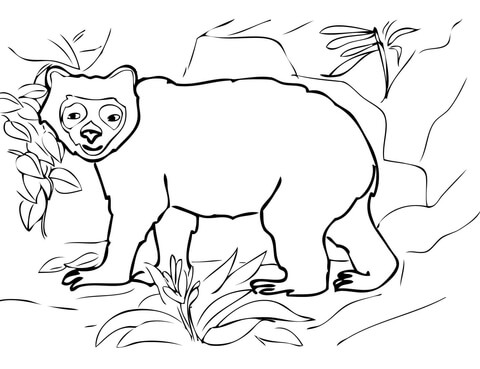 a bear coloring page photo - 1