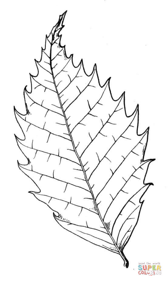 a coloring page of a tree photo - 1