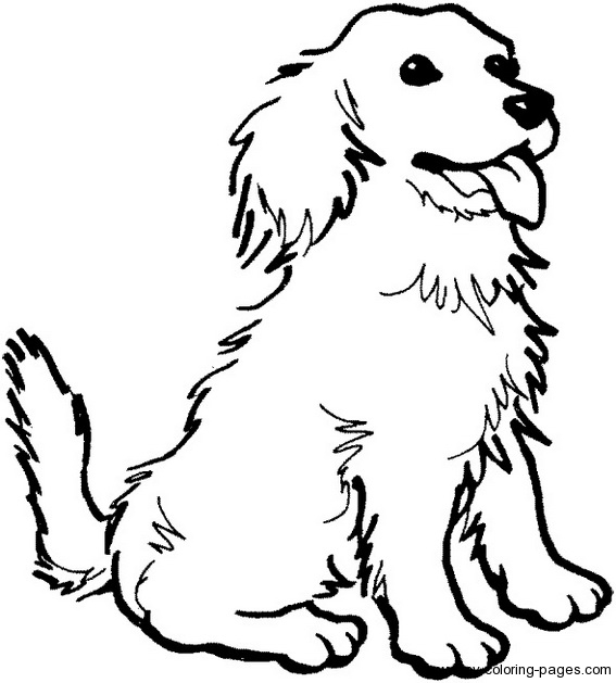 a dog coloring pages photo - 1