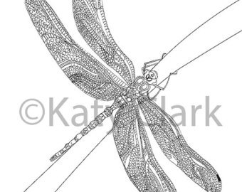 a sailor went to sea coloring page photo - 1