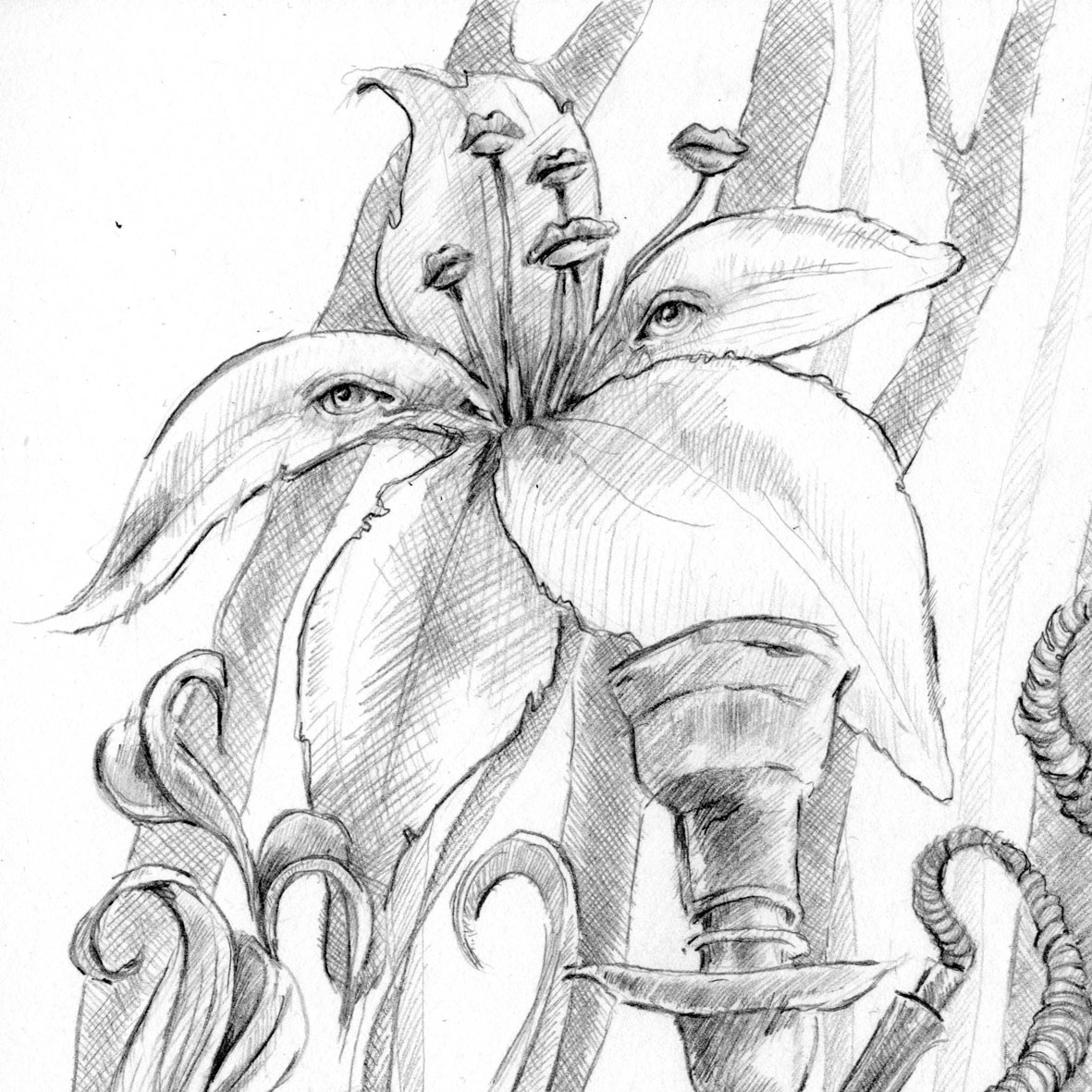 alice in wonderland caterpillar coloring pages photo - 1