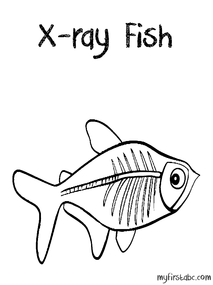amazon river fish coloring pages photo - 1