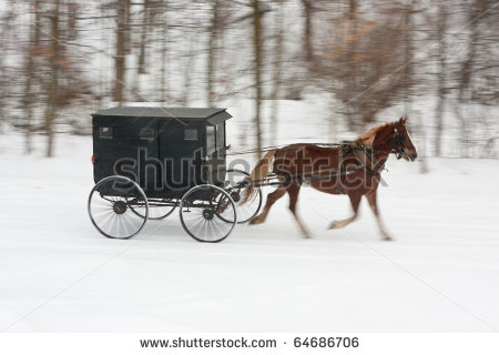 amish horse and buggy coloring page photo - 1