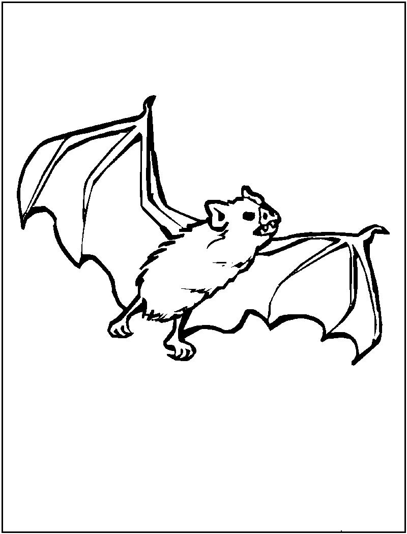 bat coloring pages photo - 1