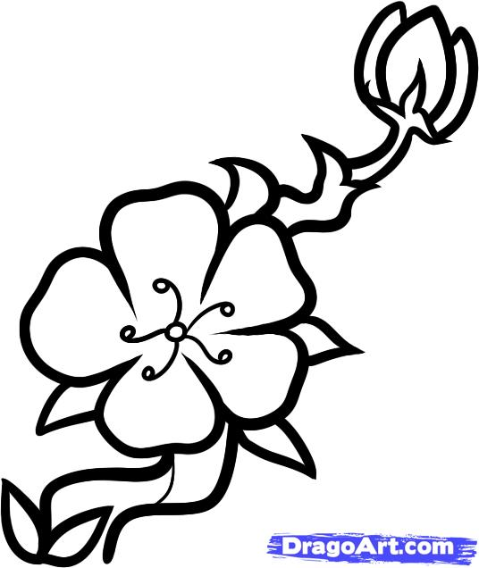 cherry tree coloring page photo - 1
