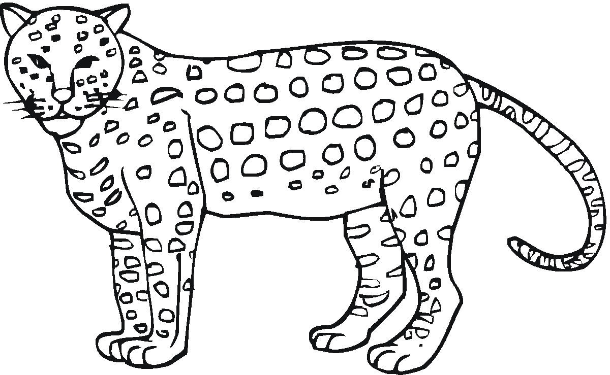 chester cheetah coloring page photo - 1