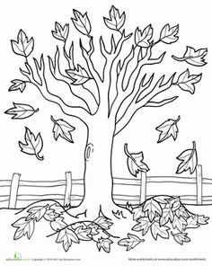 color pages of trees photo - 1