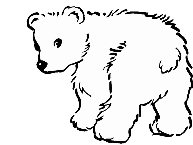 color pages polar bears photo - 1