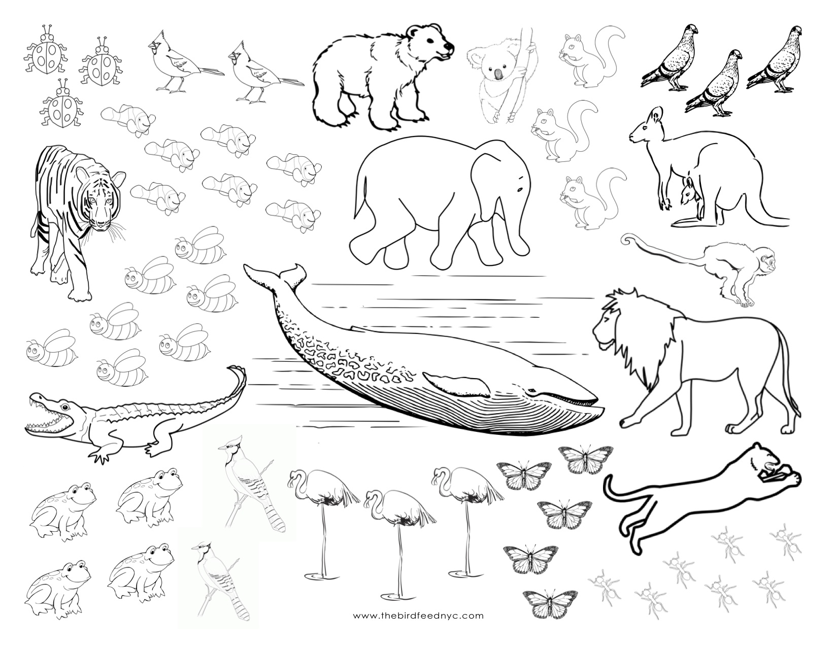 coloring pages for hibernating animals photo - 1
