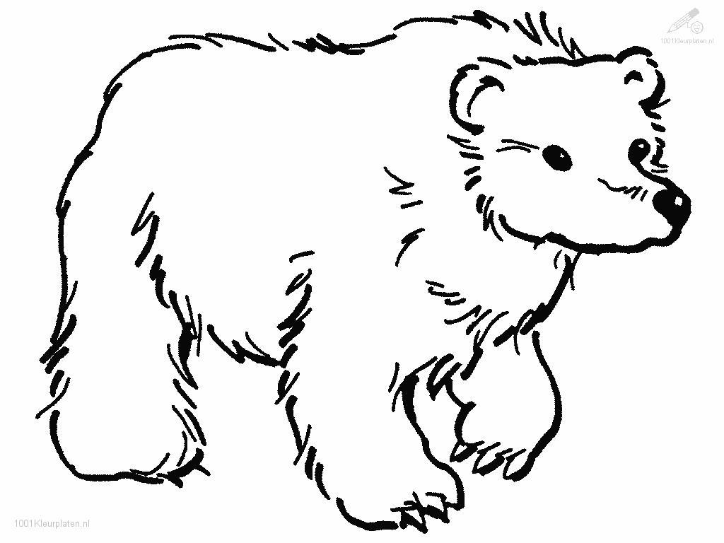 free printable grizzly bear coloring pages photo - 1
