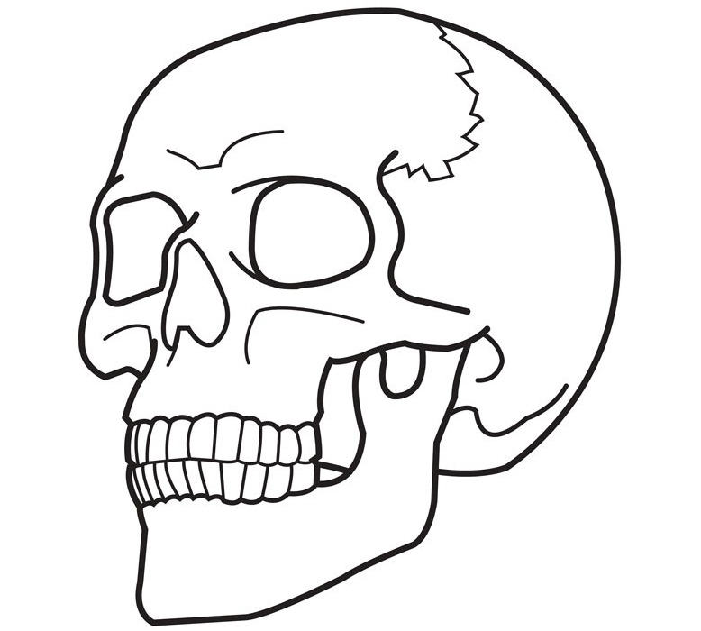 free printable halloween skeleton coloring pages photo - 1