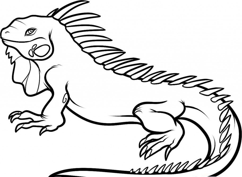 free printable iguana coloring pages photo - 1