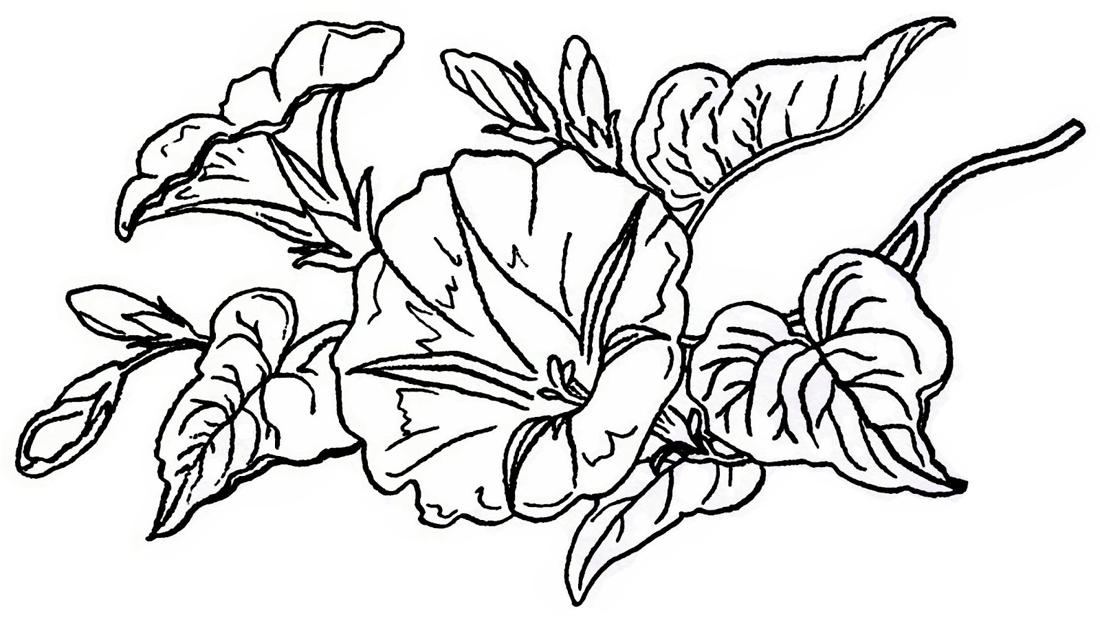free printable in the night garden coloring pages photo - 1