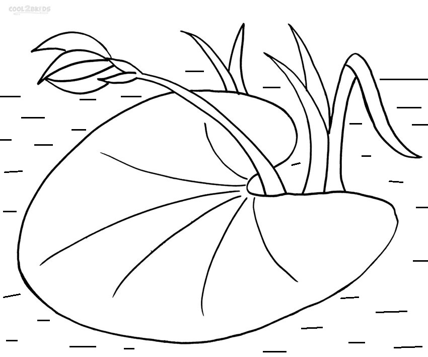 free printable lily pad coloring pages photo - 1