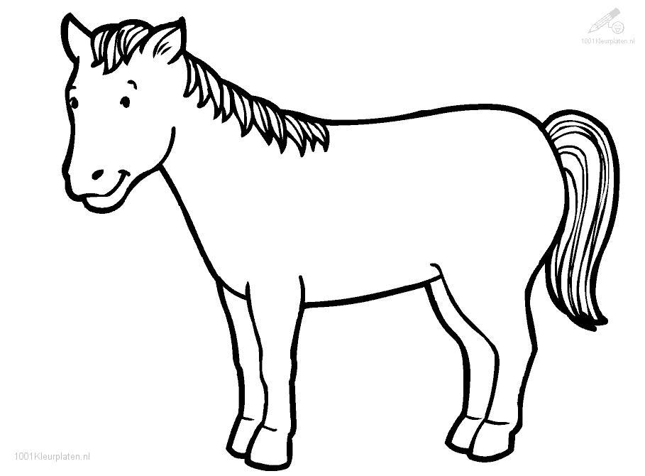 horse coloring page photo - 1