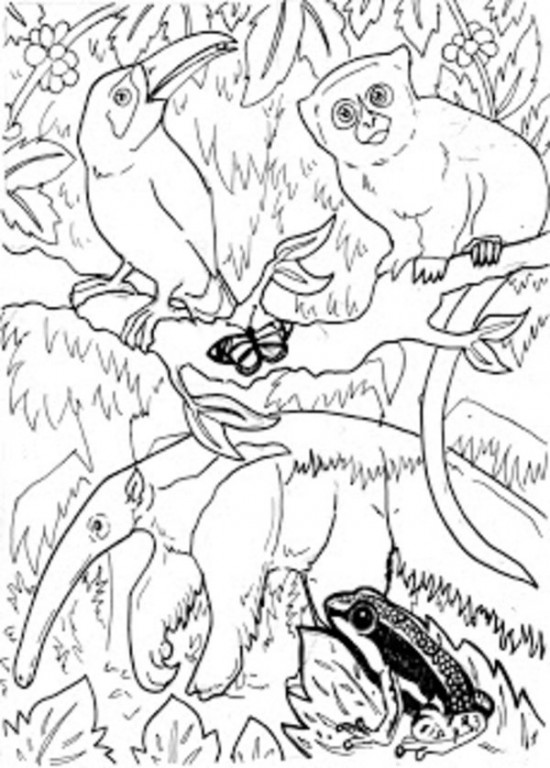 jungle animals printable coloring pages photo - 1