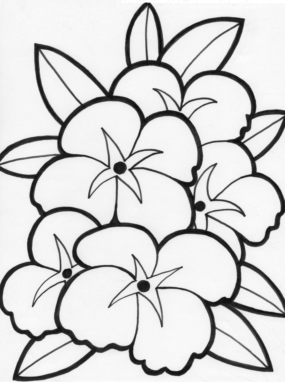 jungle flower coloring pages photo - 1